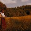 Marion Lucka: Eremitage Bayreuth (1982)