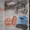 Marion Lucka: Traumbuch Seite 77