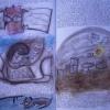 Marion Lucka: Traumbuch Seite 67