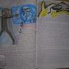 Marion Lucka: Traumbuch Seite 52