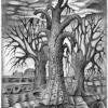 Marion Lucka: Drei Bäume, Bleistift (1981)