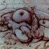 Marion Lucka: Stilleben, Bleistift, 30 x 40 cm (1982)